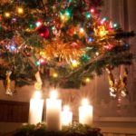 11218739 – beautiful advent wreath under the christmas tree